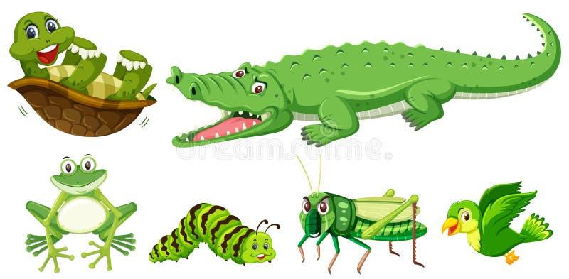 Grupo de animal verde ilustração do vetor