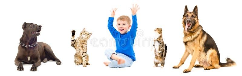 Grupo de animales domésticos juguetones y de niño alegre junto imágenes de archivo libres de regalías