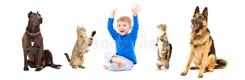 Grupo de animales domésticos juguetones y niño feliz junto imagen de archivo