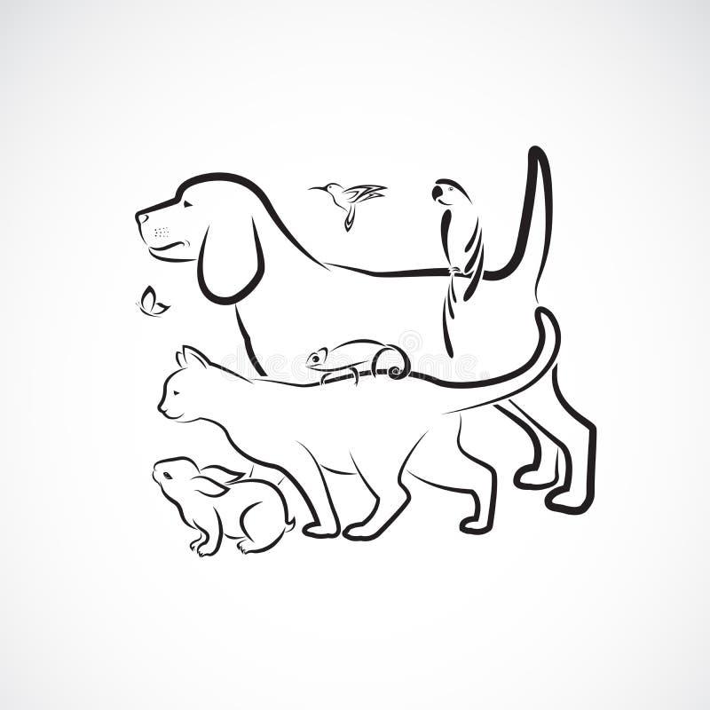 Grupo de animales domésticos - perro, gato, loro, conejo, mariposa, colibrí, camaleón del vector, aislado en el fondo blanco pet  stock de ilustración