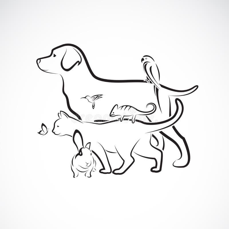 Grupo de animales domésticos - perro, gato, loro, conejo, mariposa, colibrí del vector, aislado en el fondo blanco pet Animales E stock de ilustración