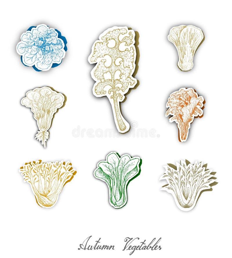 Grupo de Autumn Salad Vegetables com arte do corte do papel ilustração stock