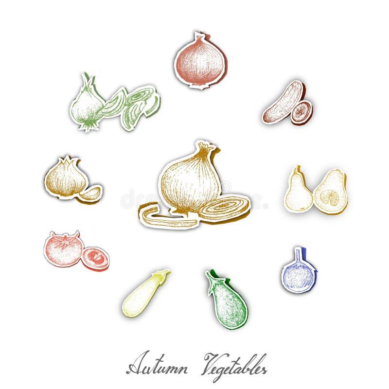 Grupo de Autumn Vegetables com arte do corte do papel ilustração do vetor