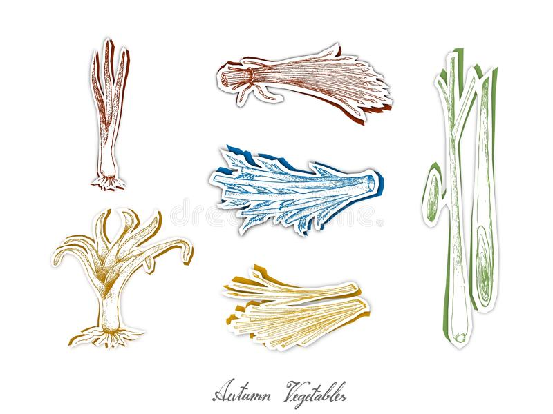 Grupo de Autumn Vegetables com arte do corte do papel ilustração stock