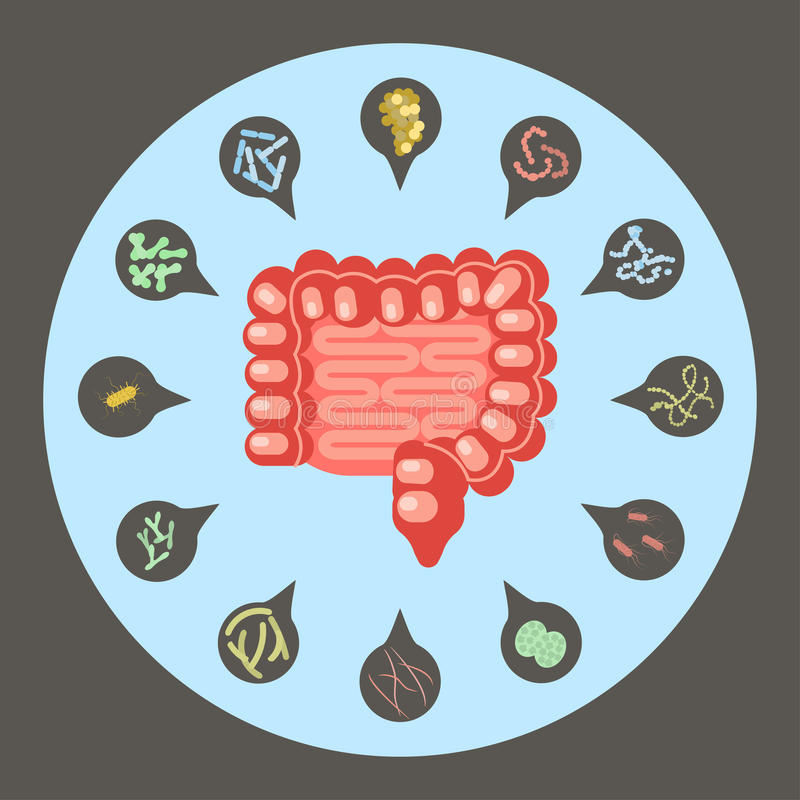 Grupo de bactérias entéricos ilustração stock