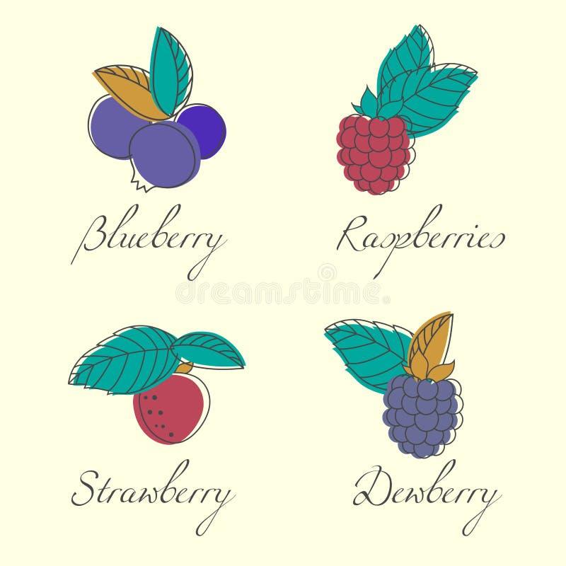 Grupo de bagas e de folhas do jardim Mirtilo, morango, framboesa, amora preta Ilustração do vetor ilustração royalty free