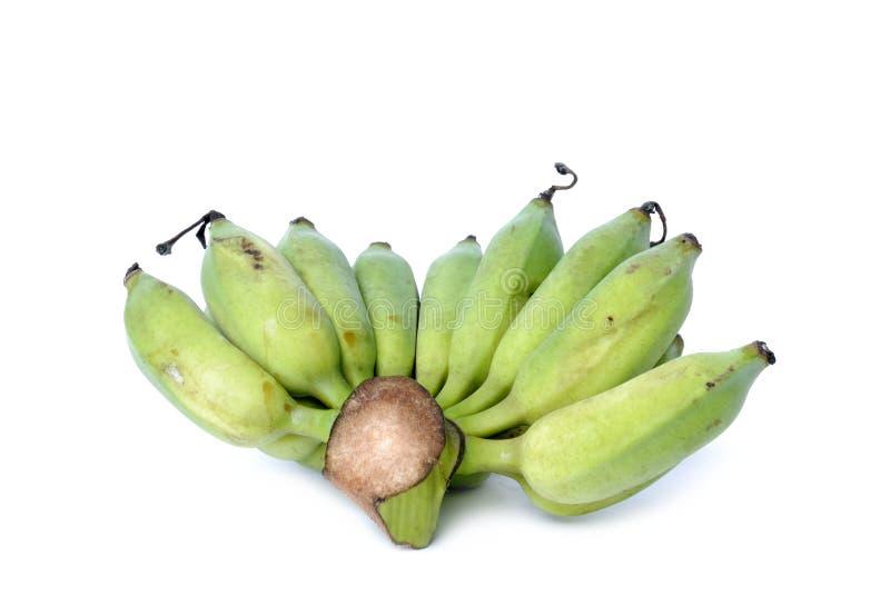 Grupo de bananas cruas imagens de stock