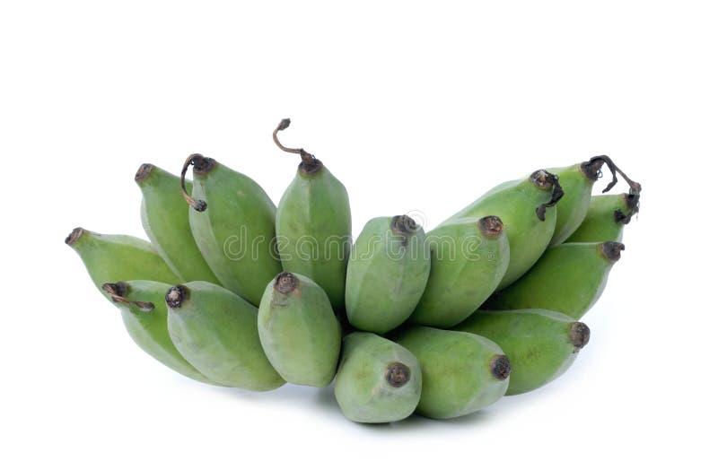 Grupo de bananas cruas imagem de stock royalty free