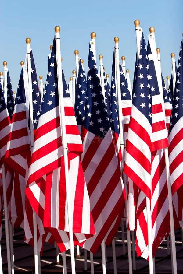 Grupo de bandeiras americanas imagem de stock royalty free