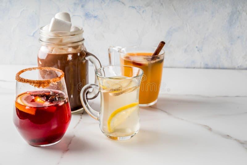 Grupo de 4 bebidas do outono fotografia de stock royalty free