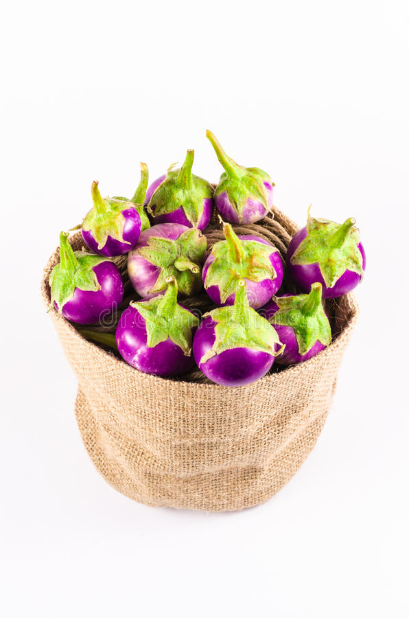 Grupo de berenjena púrpura fresca en bolso del saco en el CCB blanco fotografía de archivo