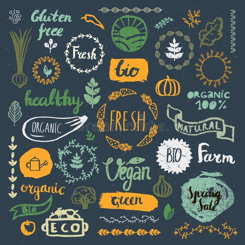 Grupo de bio tirado mão, orgânico, logotipos do produto do eco, crachás, etiquetas ilustração do vetor