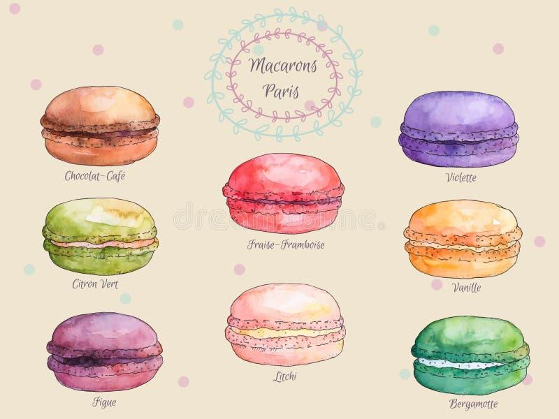 Grupo de bolinhos de amêndoa franceses do gosto diferente da aquarela, coleção de macarons franceses coloridos da variação ilustração do vetor