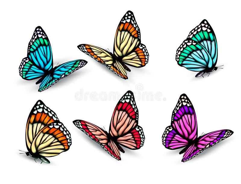 Grupo de borboletas coloridas realísticas. ilustração royalty free