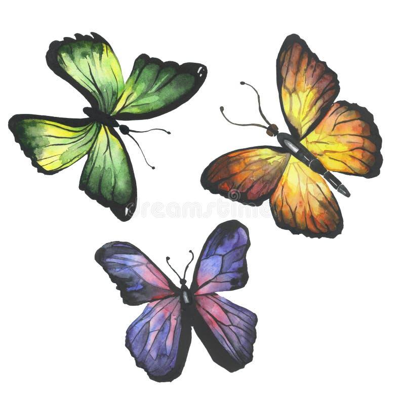 Grupo de borboletas da aquarela imagens de stock