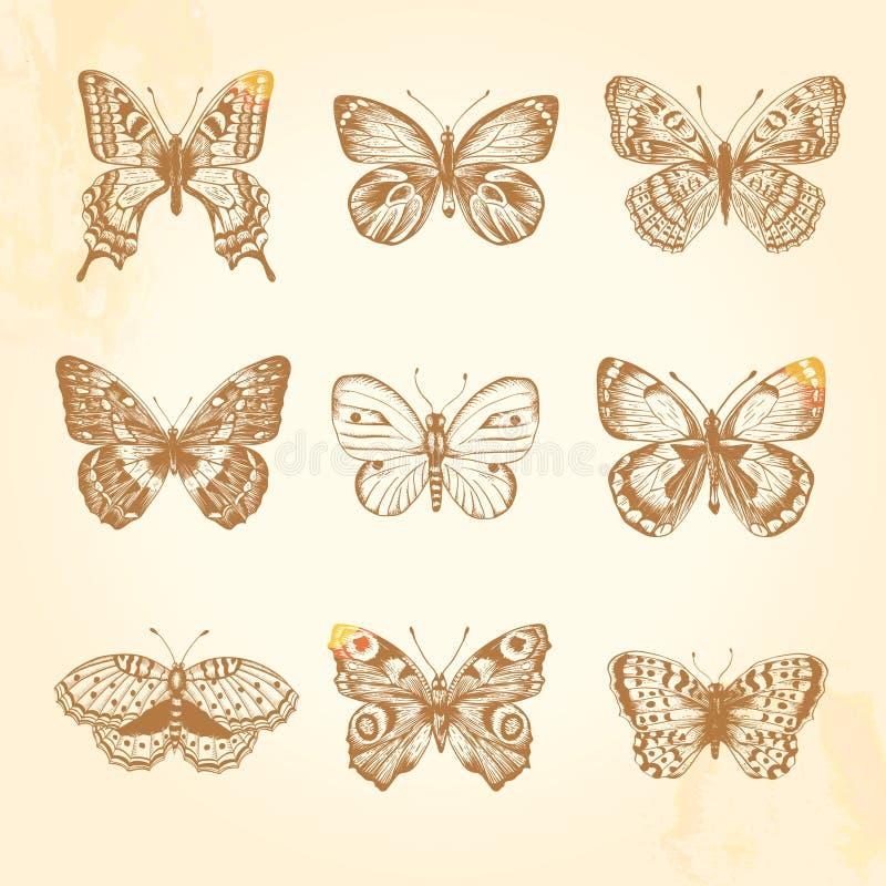 Grupo de borboletas do vintage. ilustração royalty free