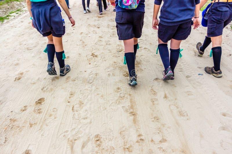 Grupo de boy scout jovenes durante caminar la excursión en el bosque, foto de archivo