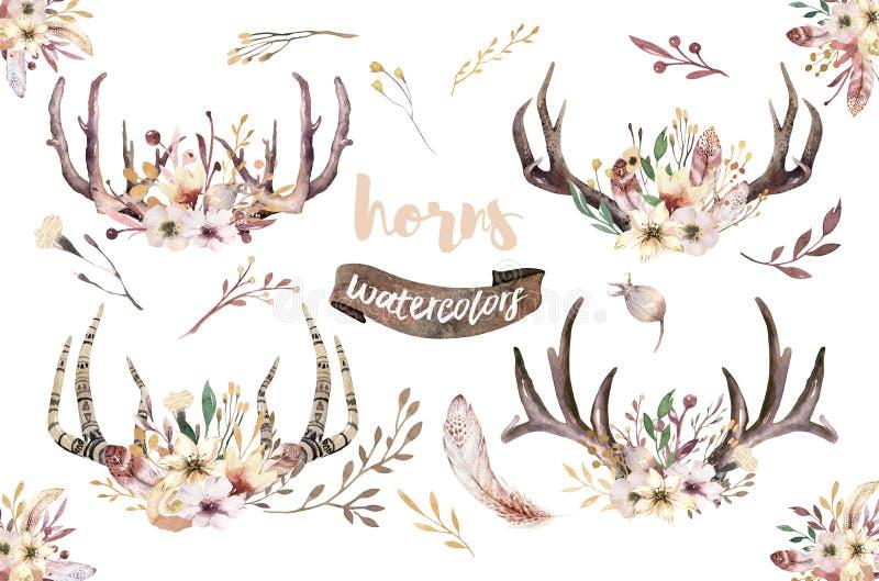 Grupo de cópia floral do chifre do boho da aquarela decoração boêmia ocidental Chifres tirados mão dos cervos do vintage com flor ilustração do vetor