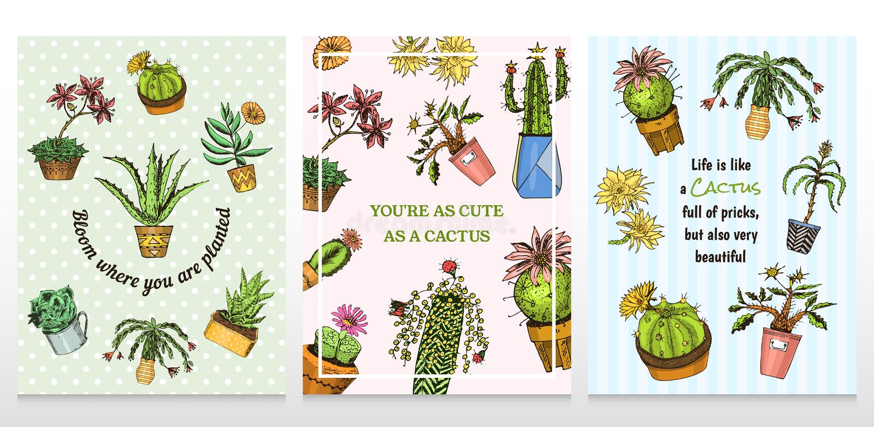 Grupo de cacto dos cartões e de plantas carnudas bonitos do molde etiquetas para meninas Cartazes mexicanos dos houseplants Cacto ilustração stock