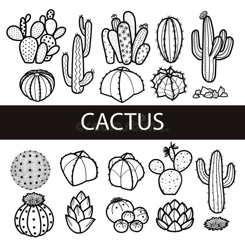 Grupo de cacto e de plantas carnudas isolados no esboço preto Vetor ilustração stock