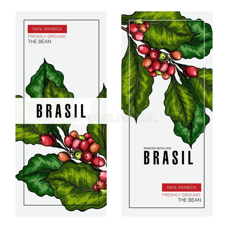 Grupo de café Ramo tirado mão do café Ícone gravado colorido vetor Projeto de empacotamento no estilo brutal Molde da etiqueta ilustração do vetor