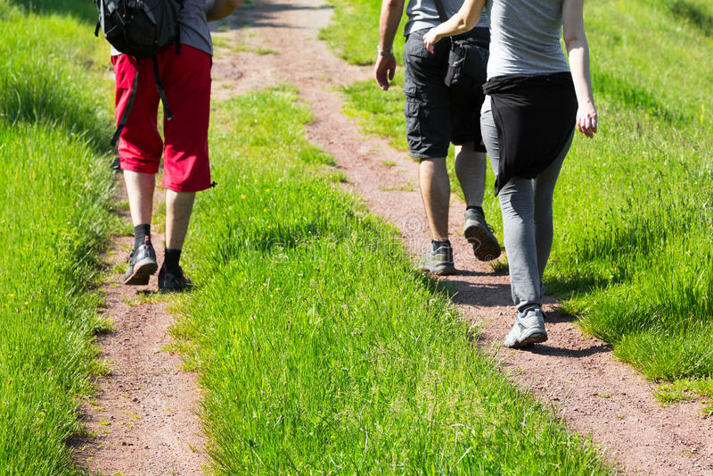 Grupo de caminhantes novos que andam abaixo de uma fuga fotos de stock