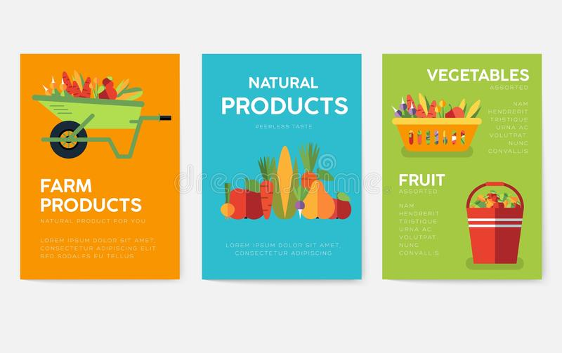Grupo de cartões da informação da exploração agrícola Molde de flyear, compartimentos da natureza, cartazes, capa do livro, bande ilustração do vetor