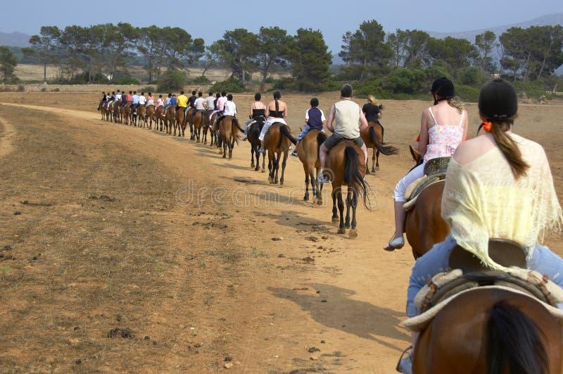 Grupo de cavaleiros do cavalo foto de stock