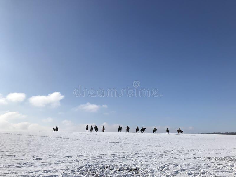 Grupo de cavaleiros em cavalos pretos foto de stock royalty free