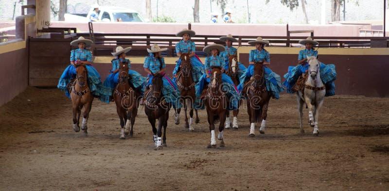 Grupo de cavaleiros fêmeas no vestido azul fotografia de stock