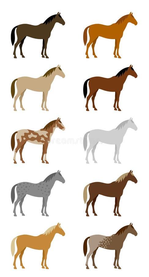 Grupo de cavalos coloridos ilustração royalty free