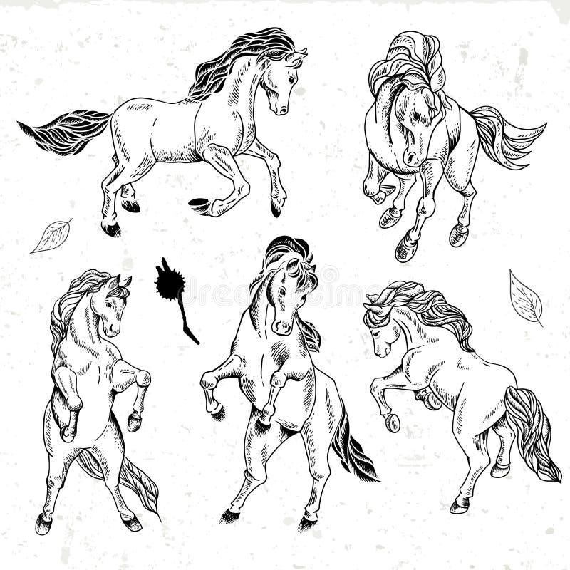 Grupo de cavalos monocromáticos tirados mão do esboço ilustração do vetor