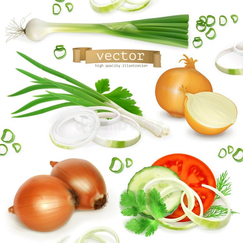 Grupo de cebola, ícones do vetor ilustração do vetor
