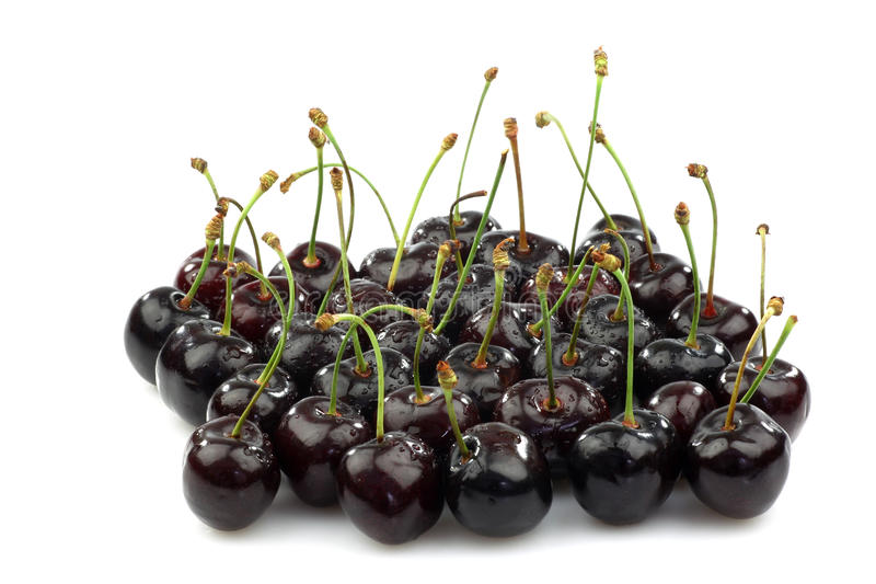 Grupo de cerejas doces pretas frescas brilhantes foto de stock royalty free