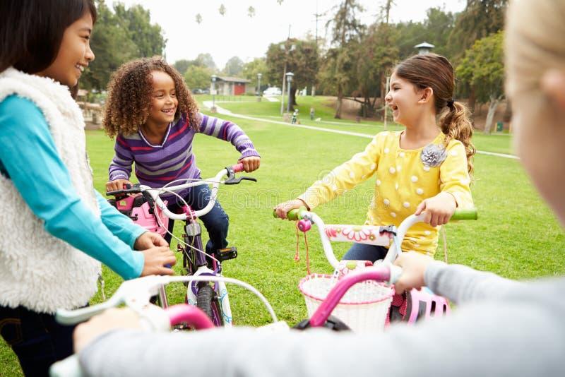 Grupo de chicas jóvenes con las bicis en parque imagenes de archivo