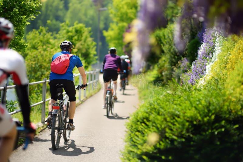 Grupo de ciclismo desportivo do homem no parque ensolarado no dia de verão quente Suíça, Europa imagem de stock