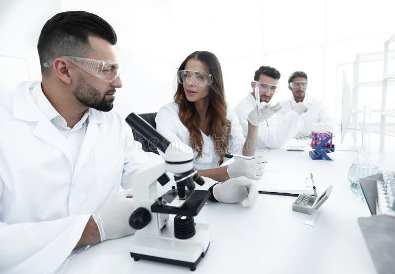 Grupo de cientistas novos que discutem os resultados de um estudo fotos de stock royalty free