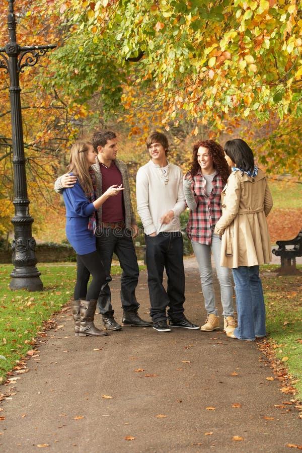 Grupo de cinco amigos adolescentes que conversam no parque foto de stock