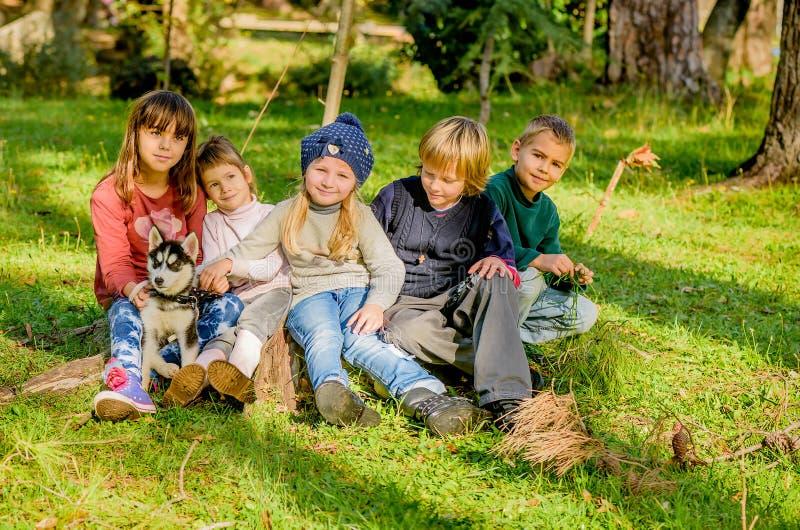 Grupo de cinco crianças que jogam com o cachorrinho ronco no parque fotos de stock