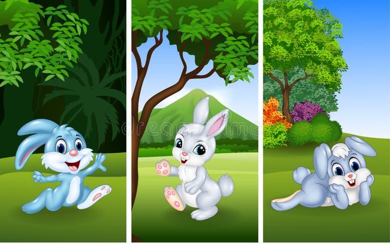 Grupo de coelhos engraçados com fundo da natureza ilustração do vetor