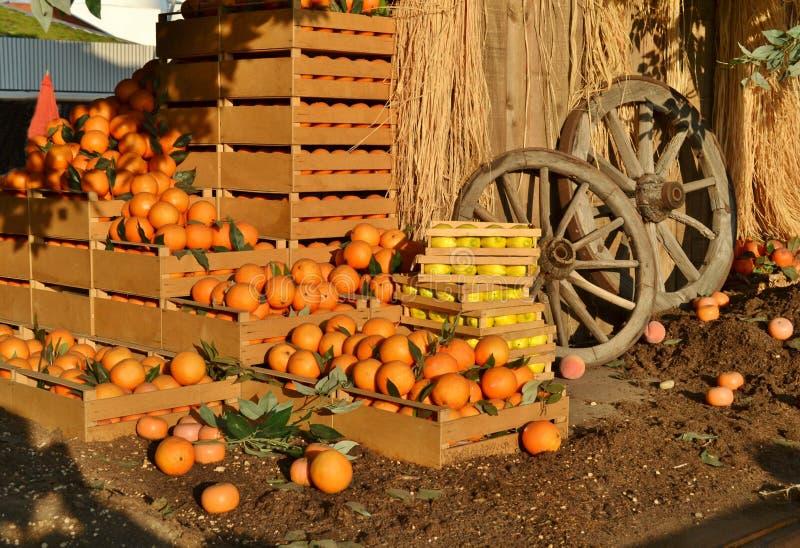 Grupo de colheita rica com laranjas, limões e as rodas de madeira do aspecto rural imagens de stock royalty free