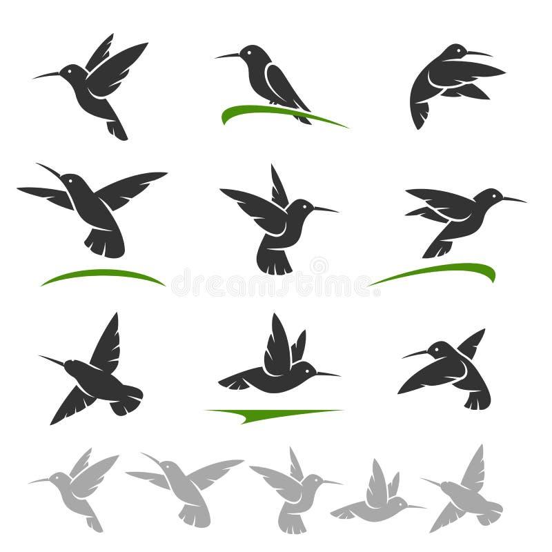 Grupo de Colibri Vetor ilustração stock