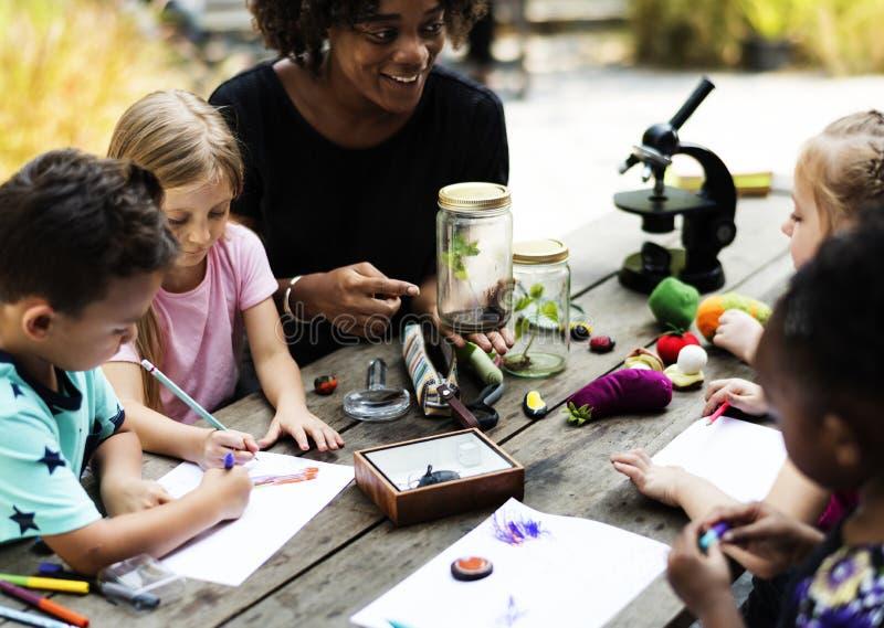 Grupo de compañeros de clase de los niños que aprenden la clase de dibujo de la biología imagen de archivo