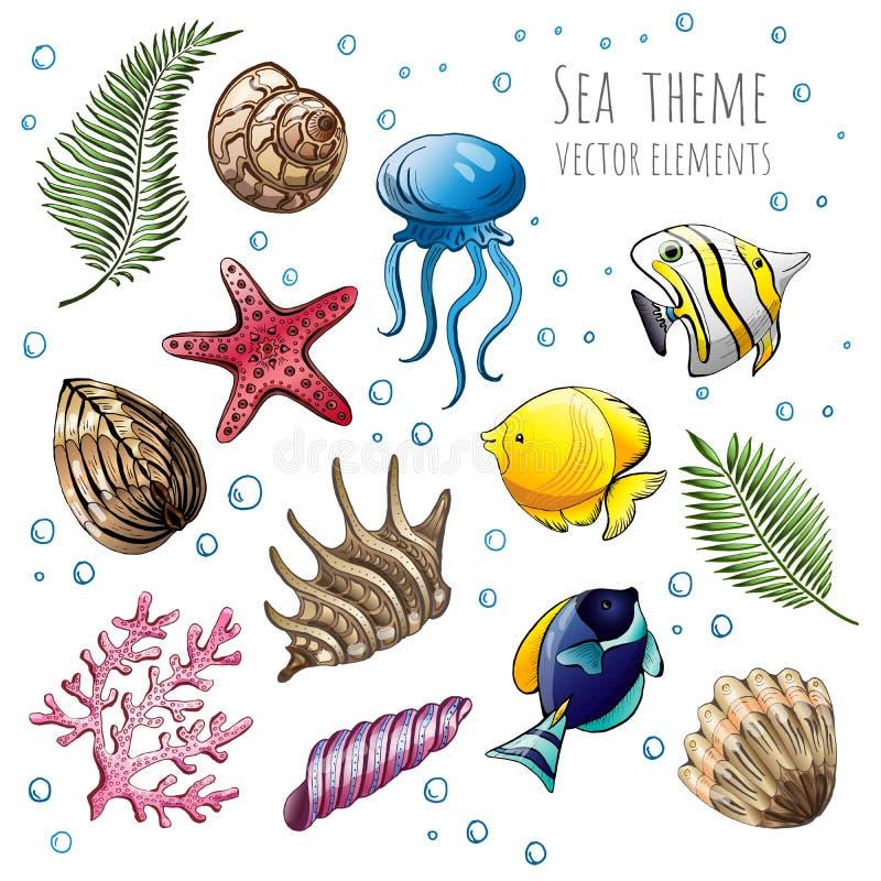 Grupo de conchas do mar, de estrela do mar e de medusa do vetor no fundo branco para o projeto Ilustração do vetor ilustração royalty free