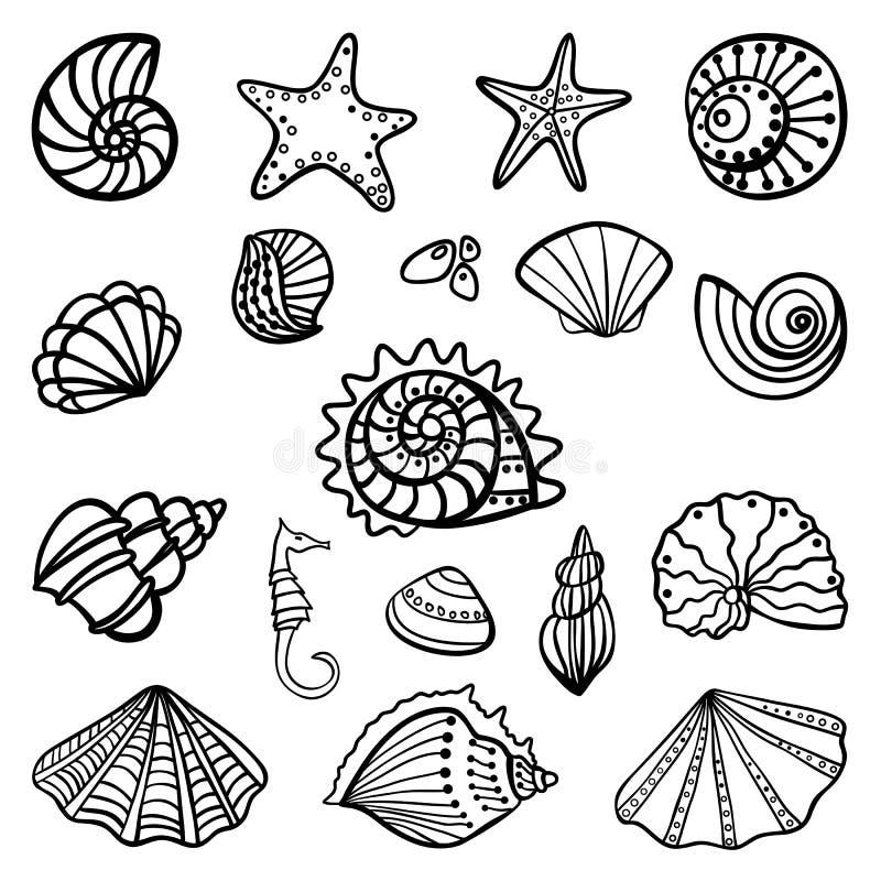 Grupo de conchas do mar no fundo branco ilustração stock