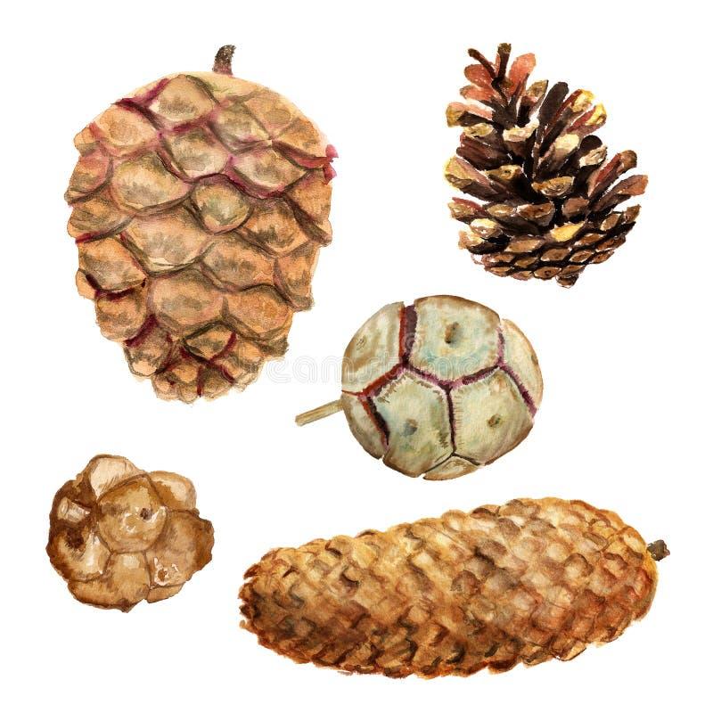 Grupo de cones da aquarela ilustração stock