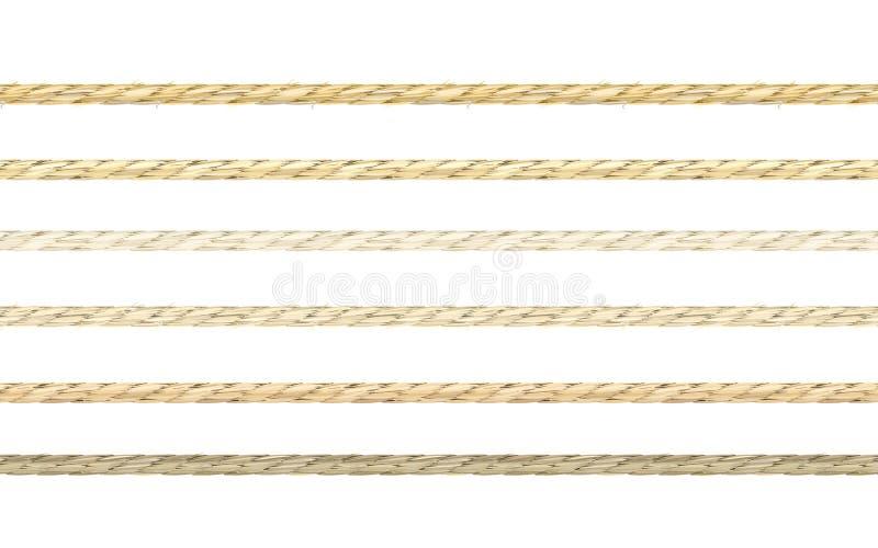 Grupo de cordas de linho realísticas ilustração do vetor