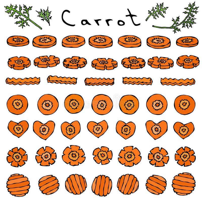 Grupo de cortes e fatias de cenoura do círculo diferente das formas, flor, coração, onda Vegetais maduros culinária do vegetarian ilustração royalty free