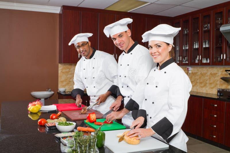 Grupo de cozinheiros chefe imagens de stock
