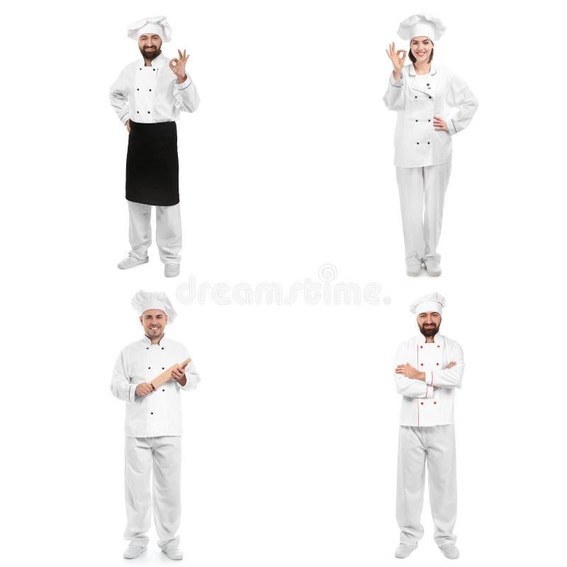 Grupo de cozinheiros chefe profissionais no fundo branco fotografia de stock